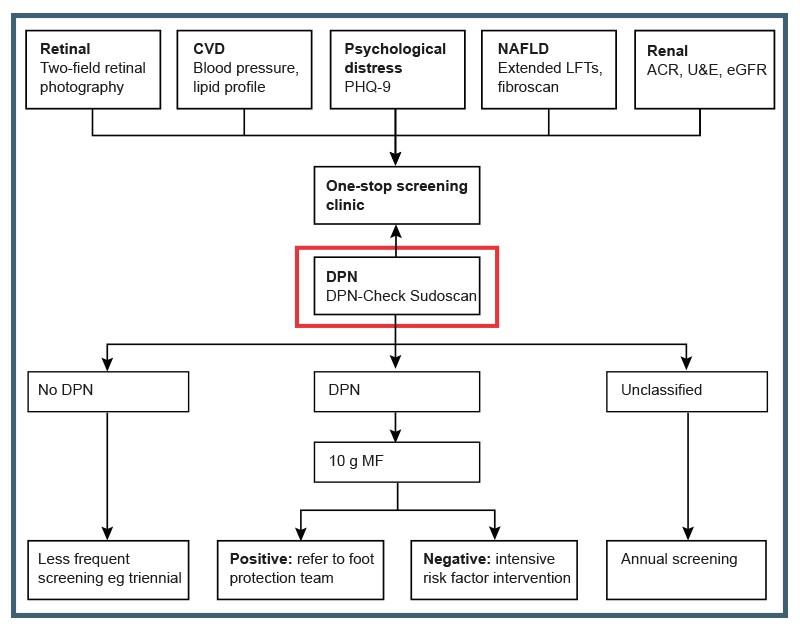 diabetes de neuropatía de fibra grande