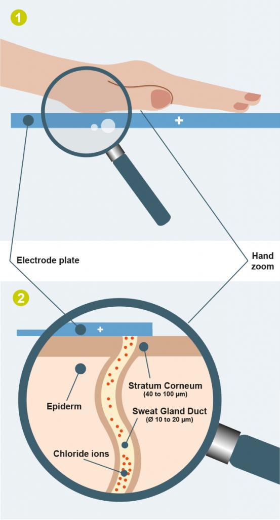 visuel-a-test-of-sudoral-function-smartphone